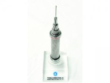 AAC / Conductor de aluminio